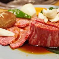 金竜山 - 料理写真:ヒレとシャトーブリアンの盛り合わせ