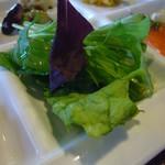 麦畑 - 野菜サラダ