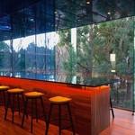 コーネルコーヒー - お隣の公園の緑が綺麗な空間