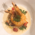 AURELIO - 天使の海老のソテー、大麦サラダと共に
