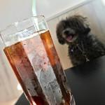 カフェ レミー - 水出しアイスコーヒー