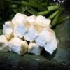 かはほり - 料理写真: