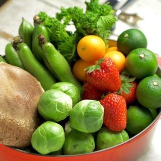 【自家栽培野菜】東久留米にあるO'KOK畑★