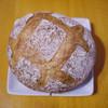 ゼルコバ - 料理写真:ブール~☆