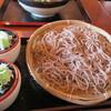 路麺えんそば - 料理写真:中ざる=大盛り=490円(税別)