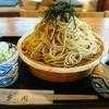 多聞 - 料理写真:ざるそば   ¥670          大盛り  +¥350