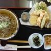 もってのほか - 料理写真:天ぷらそば(温)1,230円
