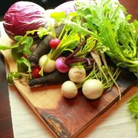 無農薬野菜や旬の魚介など、こだわりの食材を使用。