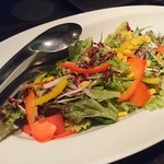 63133778 - 【サラダ】10品目の彩りサラダ