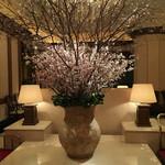 ホテル ラ・スイート神戸ハーバーランド - ロビー