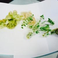 【春限定】 山菜の天麩羅