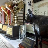 牛肉で有名な老舗『吉澤商店』から仕入れた黒毛和牛を使用