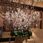 ホテル ラ・スイート神戸ハーバーランド - 冬に咲く桜