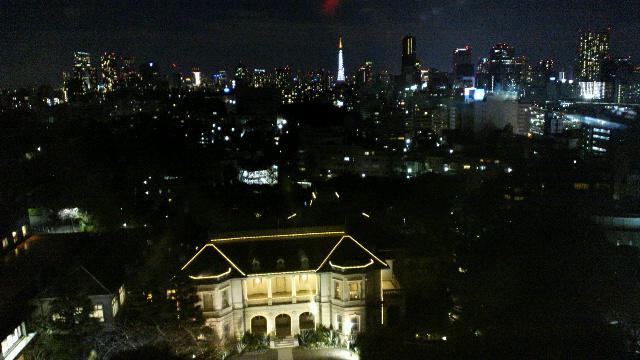 ザ・プリンス さくらタワー東京