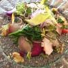 ペルゴーラ - 料理写真:朝獲れ鮮魚と春野菜の湘南風サラダ