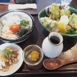 釜揚げうどん 鈴庵 - 新あおさの磯辺天ぶっかけUDONと卵黄漬けシラス丼セット