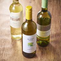 白ワインが美味しい季節!