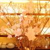 ヴィノテカサクラ - ドリンク写真:カウンターに置かれた桜の、少しずつ開いていく蕾が春らしくていいですね。。