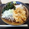 ゆで太郎 - 料理写真:朝そばの冷たいそばのおろし大根
