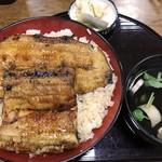 浜松 - うなぎ丼「特」大盛り
