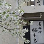65024607 - 外観 大島桜