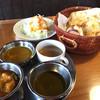 ザイカ1番レストラン - 料理写真:ザイカバイキング 980円 3種のカレー・スープ・サラダ・ナン (カレー・ナン・ライス・スープ・サラダおかわり自由)  1回目から凄いボリューム! おかわりする方が勇気いります(笑)