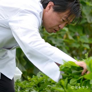 必要な食材をすぐ収穫できるので、鮮度には絶対の自信があります
