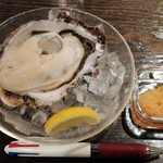 65474652 - 2017.4.14。生牡蠣のアップ。