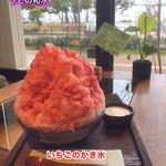 ひとの和心 - 料理写真:いちごのかき氷