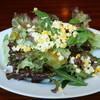 おこのみ焼き ポルティコ - 料理写真:野菜サラダ