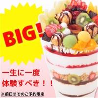 【要予約】BIG!エンデバーコスモ(6~8人分)