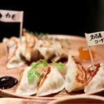 ワイン食堂 ビストロQ - ビストロギョーザ2種(名古屋コーチン&カモネギギョーザ)