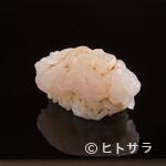 くろ﨑 - 富山湾の宝石とも称される、春の美味をそのまま握りにした『白海老』