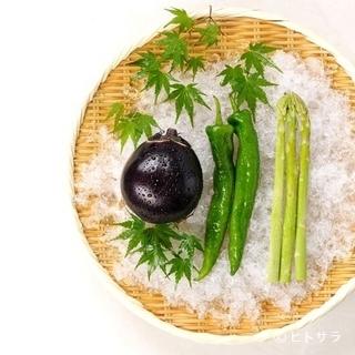 新鮮な旬の野菜・魚介を堪能できる多彩なメニュー