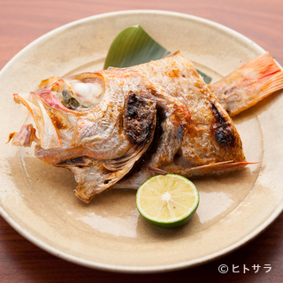 「びんび」=魚!魚屋さんとの強力タッグで実現する最高の仕入れ