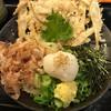 うどん和助 - 料理写真:ごぼ天ぶっかけ(冷)