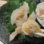 今日が丑の日 - 珍しいみる貝のコライユ