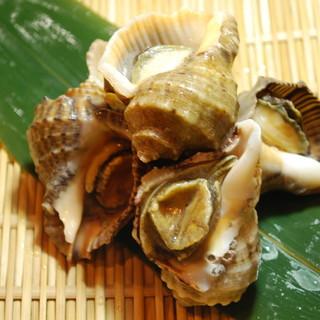★海女小屋・初夏の貝祭り~貝食べ比べ~赤ニシ貝