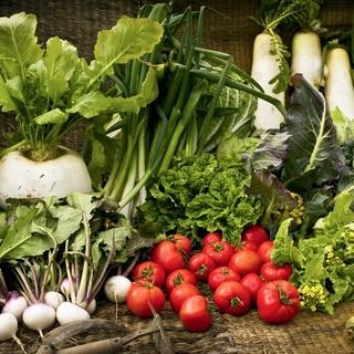自家農園で育てた、今が旬な元気な野菜がお出迎え