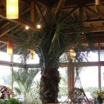 ビンゴ - 道の駅 鄙の里の内部。ここで食べることができます。