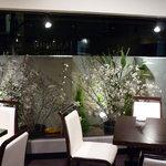 慶's Dining - 一枚ガラスの内庭には、季節の植物
