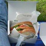ドラゴンフライ カフェ - テイクアウトのサンドイッチ