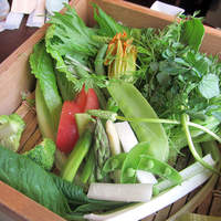 市場小路 - 蒸し野菜のバーニャカウダー