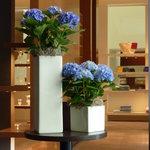 エルメス カフェ - この時期は、紫陽花