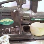 TULIPS CAFE -