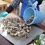 奥松島公社 焼がき施設 - 説明は簡単です。牡蠣を殻つきのまま鉄板で焼きます。