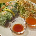 インドレストラン ナンハウス - *Daily News*-春巻き